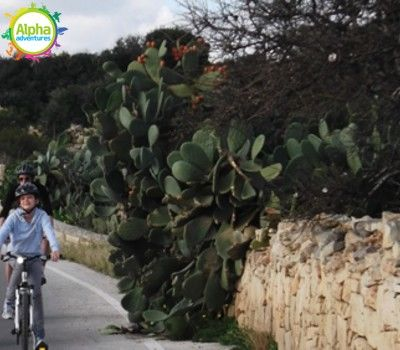 Gozo Bike Adventure
