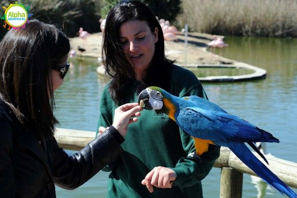 Bird park and Aquarium Tour